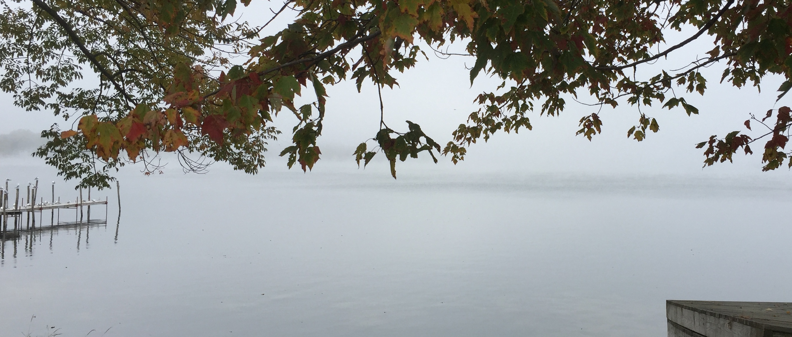 Chautuaqua lake mist