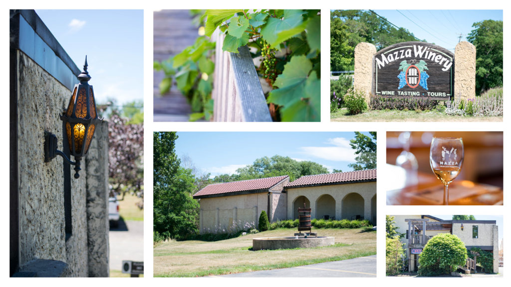 Mazza Winery